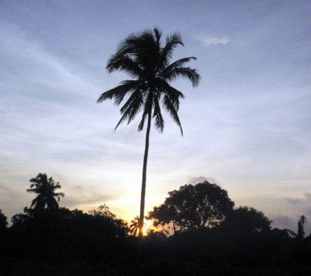 Punta Fuego sunrise