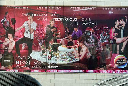 club cubic city of dreams macau