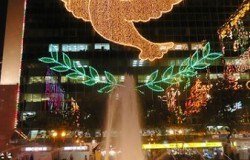 Hong_Kong_Christmas_lights
