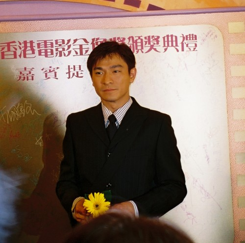 andy lau tak wah hk movie star actor film awards