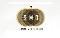 club cubic macau china simian mobile disco dj set party