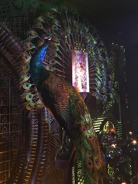 ashley sutton peacock design hong kong ophelia